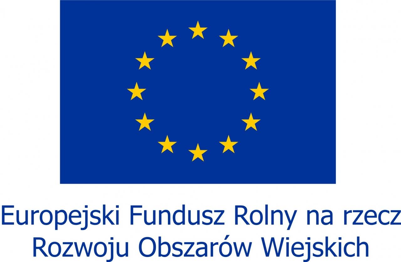 Znalezione obrazy dla zapytania logo europejski fundusz rolny